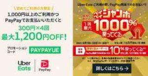 初回限定!PayPayで1000円以上支払いで最大1200円OFF