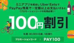 PayPayミニアプリ経由から注文で100円割引