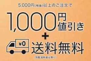 5000円以上購入で送料無料+1000円OFF