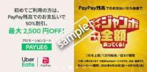 初回限定!1000円以上注文 & PayPay支払いで50%OFF